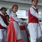 okrasa (2)